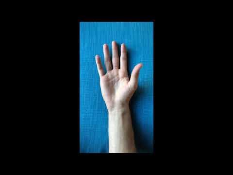 Simulatore per il trattamento di ernia spinale con le proprie mani
