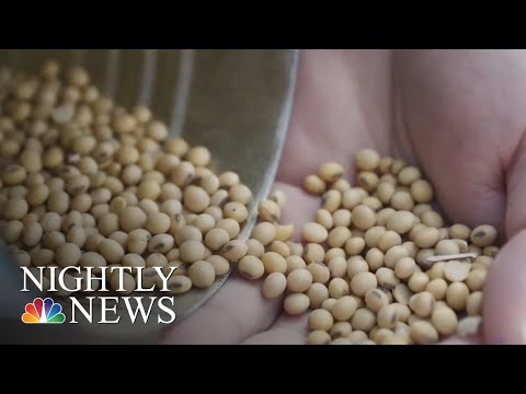 American Consumers May Soon Feel Impact Of Escalating U.S.-China Trade War | NBC Nightly News