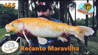 Pescaria gelada no Pesqueiro Recanto Maravilha - Fishingtur na TV 455