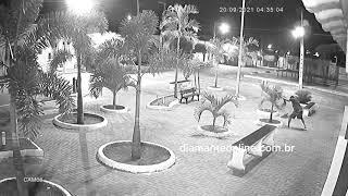 Homem destrói mudas de plantas em praça de Conceição, Sertão da Paraíba