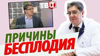Телепередача Доктор И от 9 февраля 2017 года, ТВЦ