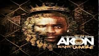 02 - Used To Know Remix feat Gotye Money J Frost [Akon - Konkrete Jungle 2012] - Mixtape (HD)