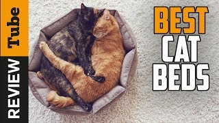 ✅Cat Bed: Best Cat Beds 2019 (Buying Guide)
