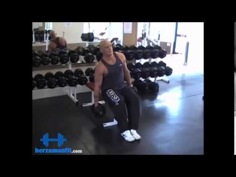 Seated Dumbbell Side Bend