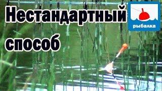 На что можно поймать карася в пруду
