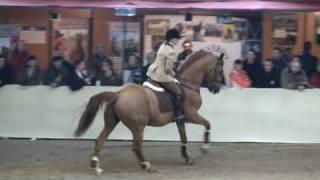 video of Baloubet du Rouet