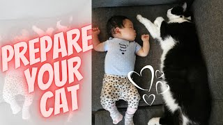How to Prepare Your Cat for Your New Baby's Arrival (7 SIMPLE Steps) │First-Time Mom│ Paulene Nistal