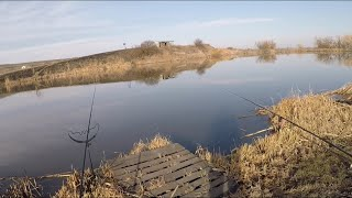 Озера пермского края для рыбалки карп