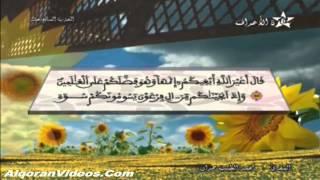 HD المصحف المرتل الحزب 17 للمقرئ محمد الطيب حمدان