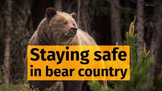 How to avoid (or survive) a bear attack
