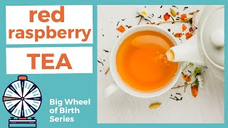 Benefits of RED RASPBERRY LEAF TEA for pregnancy