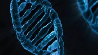 आनुवंशिकता और विकास – Heredity And Gene – Hindi