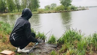 На что ловить карася после дождя