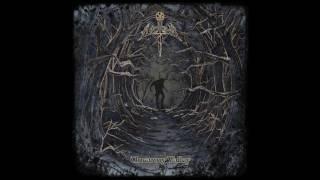 Aethyr - Into the Grey Woods