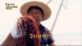 [기적의 건강밥상] 꼬시래기로 당뇨를 극복하다?!_채널A_신대동여지도 93회