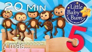 Cinco monitos + Cinco patitos + Cinco gatitas | Y más canciones infantiles | LittleBabyBum!