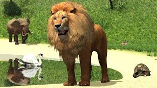 Учим Животных в Зоопарке на Русском и Английском Развивающий Мультфильм Для Детей
