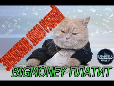 Bigmoney  заработал 10000 рублей в топовой игре