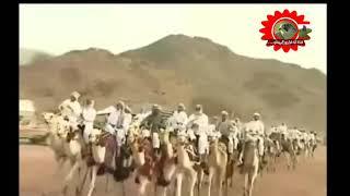 هجيني البدو شدو على العجلات/// أداء عودة ابو قرينات/// 2020 تحميل MP3