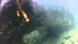 Spearfishing Humboldt Bay 8-12-15 #2
