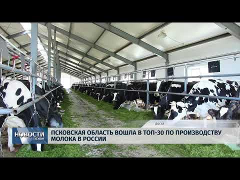 20.06.2018 # Регион вошел в топ-30 по производству молока в России