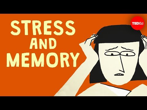 The surprising link between stress and memory – Elizabeth Cox