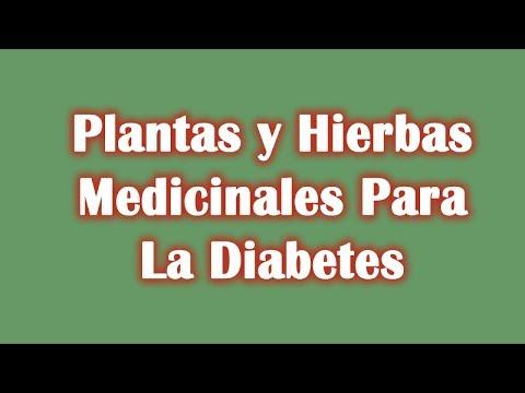 Dolor neuropatía diabética