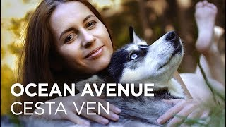 Video Ocean Avenue - Cesta ven (psí klip)