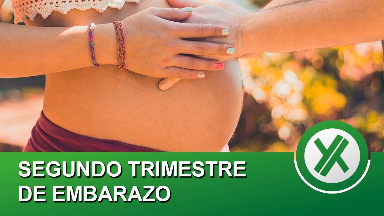 Segundo trimestre de embarazo - Qué pasa en tu cuerpo y mi experiencia personal