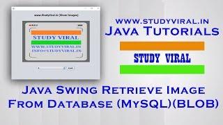 Java Swing Retrieve Image From Database (MySQL) as BLOB - StudyViral