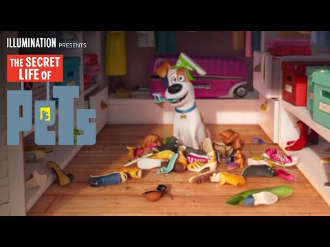 Commercial for Super Bowl 50 2016, and The Secret Life of Pets (2016) (Television Commercial)