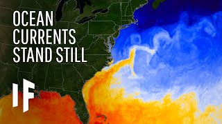 What If the Gulf Stream Current Stopped?
