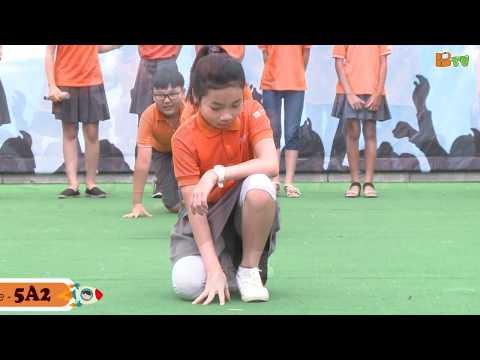 Alone mp4 5A4 Tiểu học QT Thăng Long