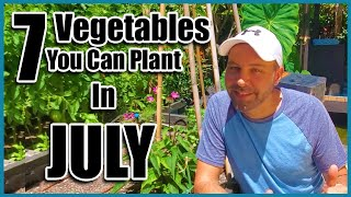7 Vegetables You Can Plant NOW in JULY!  Planting Vegetables in the Summer