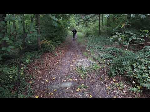 Kirchberg Tail im Wald im Herbst (DJI Mavic Mini)