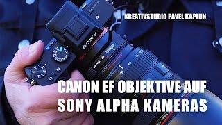 Canon EF Objektive auf Sony Alpha Kameras