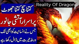 REALITY OF DRAGON | KHOJI TV