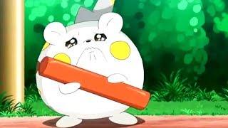 Togedemaru  - (Pokémon) - togedemaru and sophocles pokemon amv
