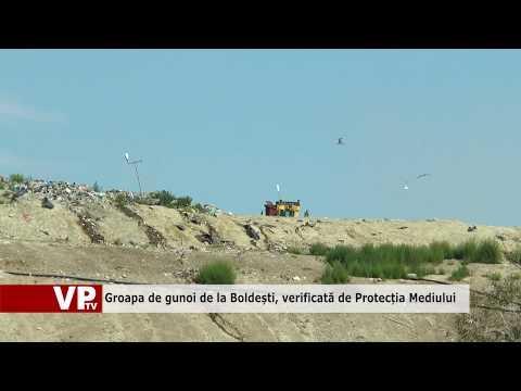 Groapa de gunoi de la Boldești, verificată de Protecția Mediului