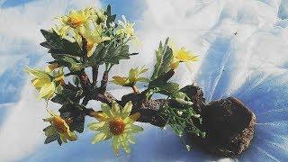 Diy artificial bonsai tree tutorial * Искусственное дерево своими руками
