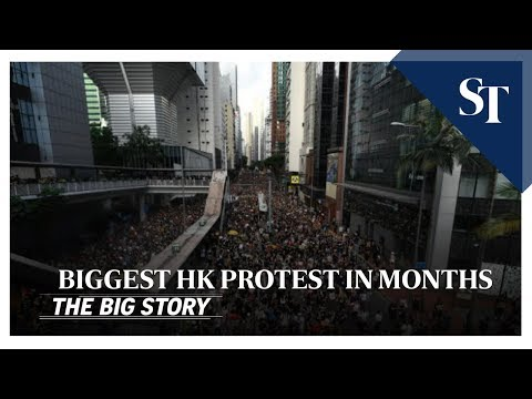 Biggest Hong Kong protests in months | THE BIG STORY | The Straits Times