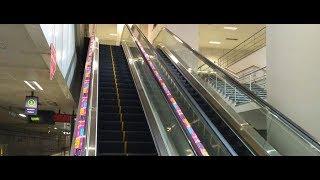 ad-roller showcases tech event on Namma Metro escalator