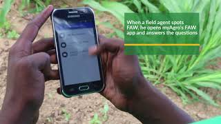 myAgro: A Complete Solution to Fall Armyworm