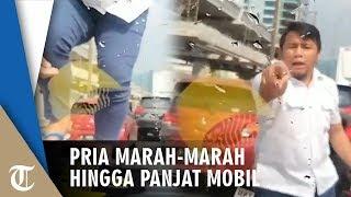 Viral Video Pria Marah-marah hingga Panjat Mobil Pengendara Lain di Tol Pancoran