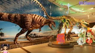Thơ Nguyễn - Đồ chơi búp bê khám phá viện bảo tàng động vật