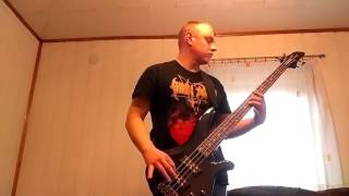 Organek   Mississippi W Ogniu (bass Cover)