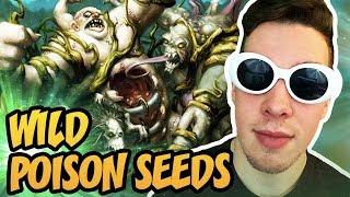 Hearthstone: Wild Poison Seeds