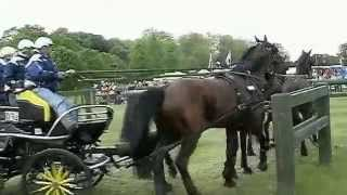 preview picture of video 'Royal Windsor Horse Show - The Marathon'