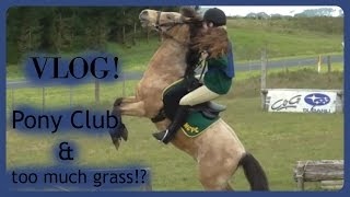 VLOG #2 | Pony Club & Too Much Grass!?
