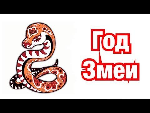 Год Змеи – описание и характеристика знака